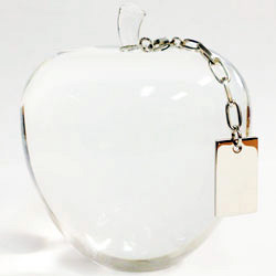 Apple Paperweight with Tag